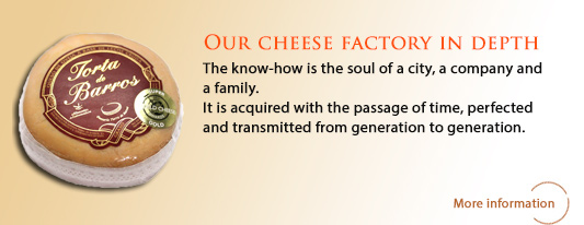 Our Cheese Factory